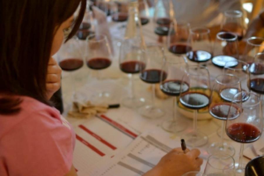 Assegnate le gran medaglie d'oro per i migliori vini del Sud Italia. Questa sera al via il percorso on the road per la nona edizione di Vino è Musica